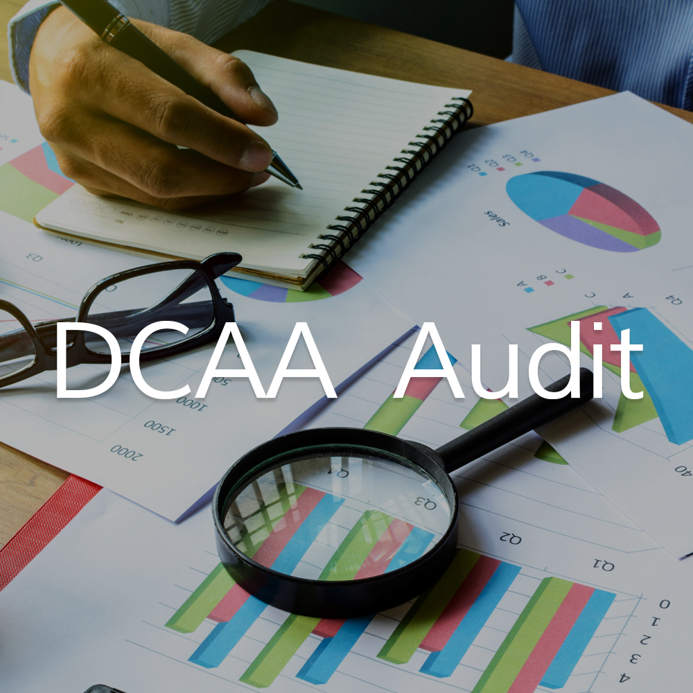 DCAA_Audit_Icon.jpg