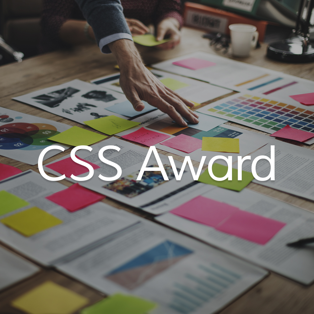 CSS_Icon.jpg