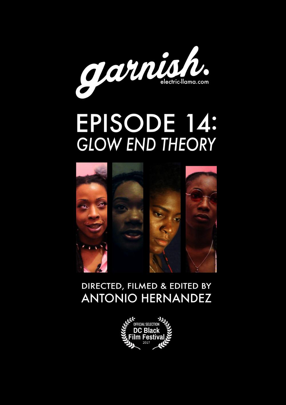 Electric Llama - garnish_ep14_poster.png