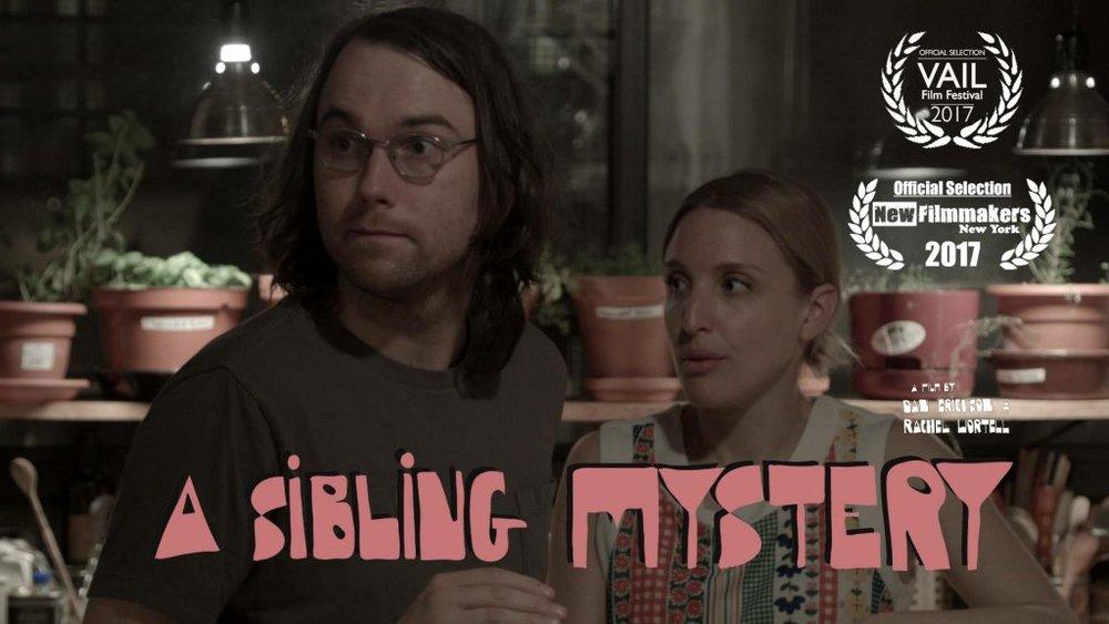 Rachel-Wortell-A-Sibling-Mystery-05-1024x576.jpg