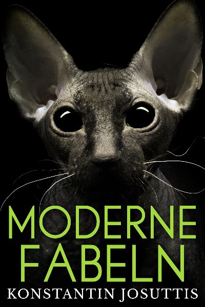 premade-cat-horror-book-cover-design.jpg