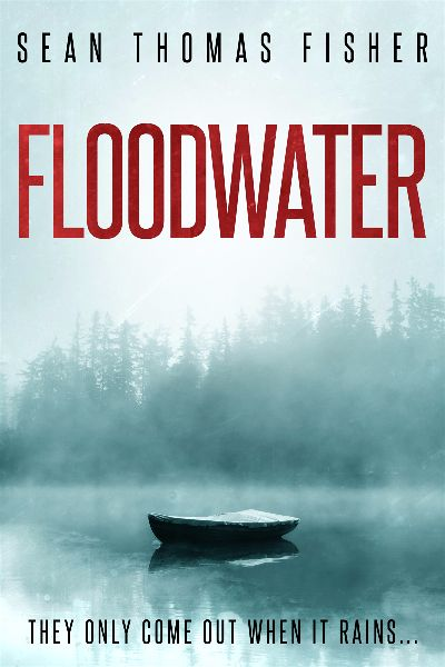 premade-lake-horror-ebook-cover-design.jpg