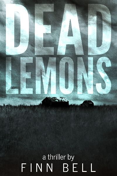 premade-series-sky-thriller-book-cover.jpg