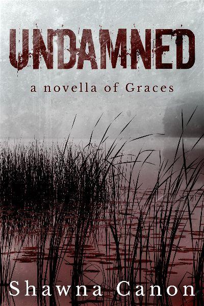 premade-thriller-abstract-e-book-cover-design.jpg