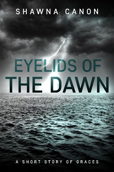 premade-sea-storm-thriller-cover-design.jpg