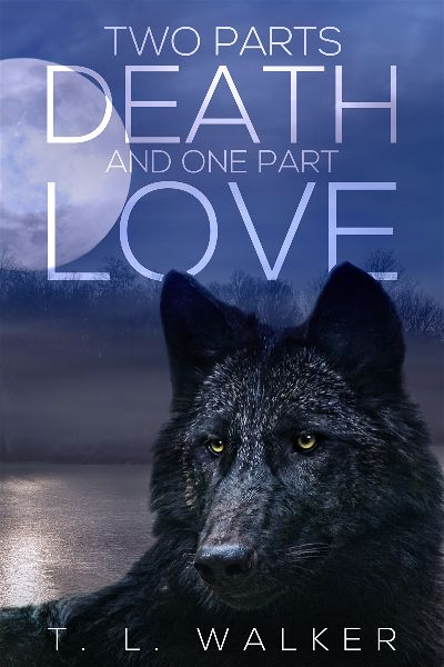 premade-fantasy-wolf-e-book-cover-design.jpg