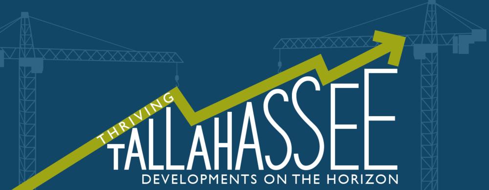 Developments on the Horizon in Tallahassee