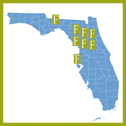 Publix Shopping Centers in Florida
