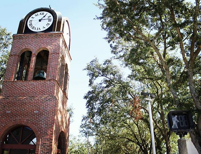 Who wouldn't want to be located in the heart of downtown #Gainesville? We have exactly what you need to highlight your business in the downtown Gainesville area! Be sure to take a look at all of our downtown listings on our website. Link in bio. #DestinationDowntownGNV #WhosYourBroker #ItsTheLeaseWeCanDo #Downtown #FL #Florida #Clocktower #Historic #RealEstate #Outdoors #City #Cityscape