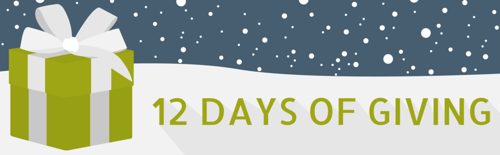 12 Days of Giving 2017-01.png