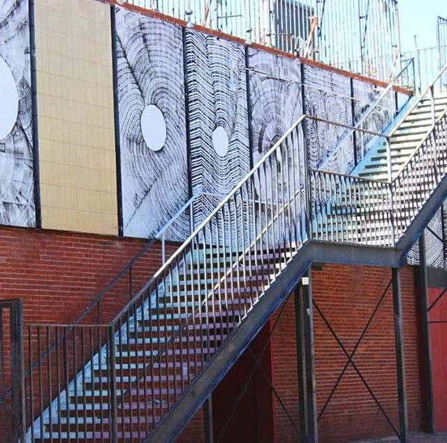 Downtown #Gainesville is full of character! We have exactly what you need to highlight your business in the #downtown Gainesville area! Take a look at all of our downtown listings on our website! Link in bio. #DestinationDowntownGNV #Florida #FL #stairs #architecture #art #walls #bricks #city #WhosYourBroker #ItsTheLeaseWeCanDo