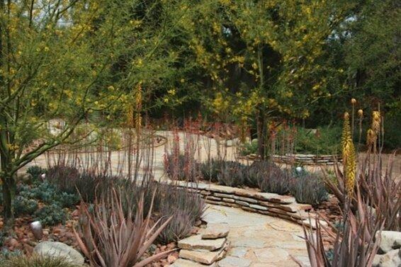 Rothberg residence      Landscape design:    Salvador Rodriguez