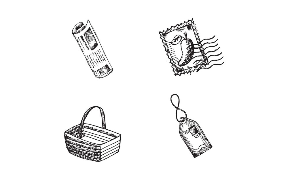 bravado-spice_illustration-2.jpg