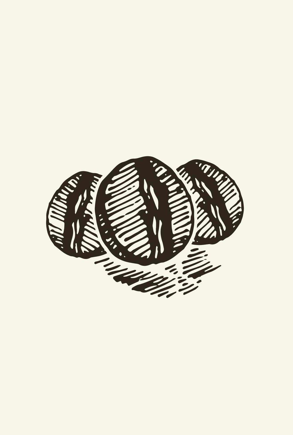chemcoffee-vert_bean-illustration.jpg