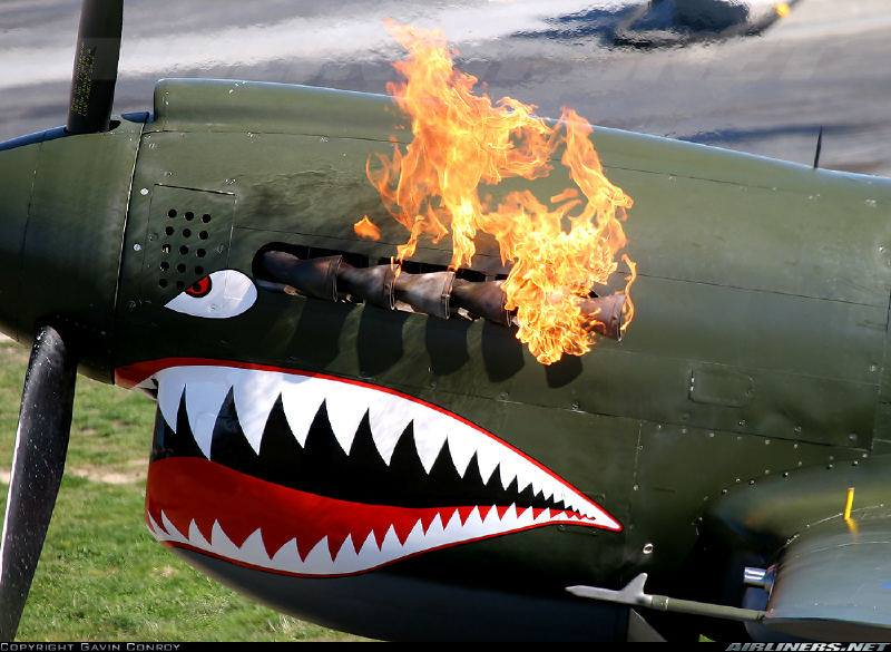 Curtiss P-40 Warhawk: Is there a badder-assed plane in existence? Or a badder-assed anything?