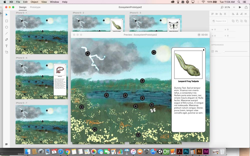 Ecosystem Interactive - Initial UX prototype (Adobe XD)