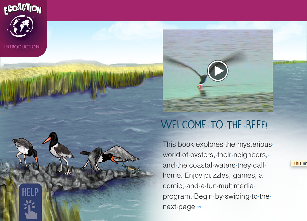 The Oyster Book - iBook