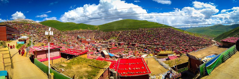 tibetZS-13.jpg