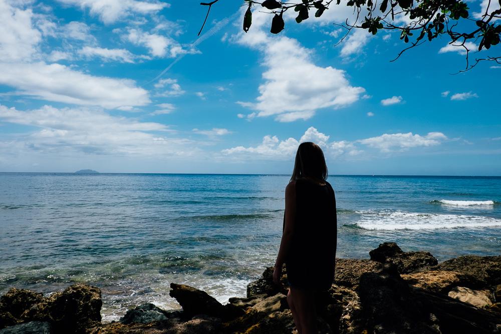 Ocean Watcher San Juan