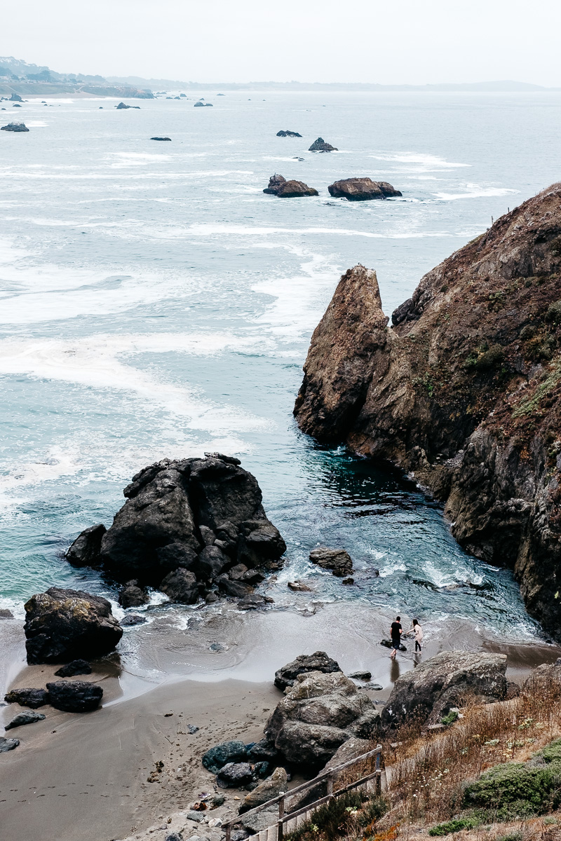 Road Trip Through Point Reyes