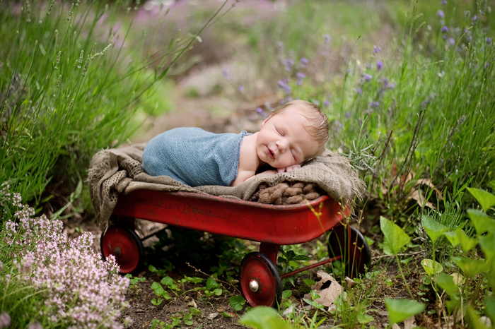 outdoor newborn portrait western ma