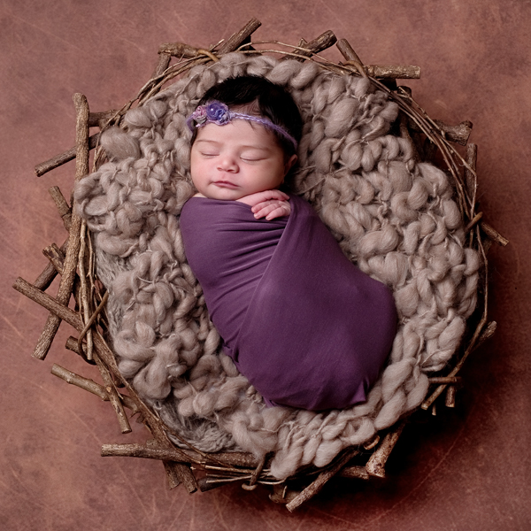 newborn baby girl with nest and purple tones