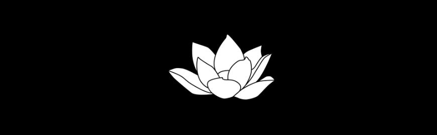 Flor de Lótus.png