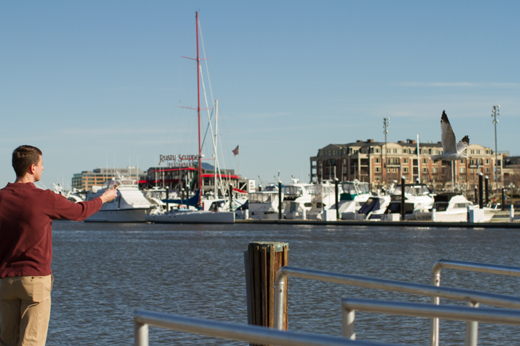 Inner-Harbor-Baltimore