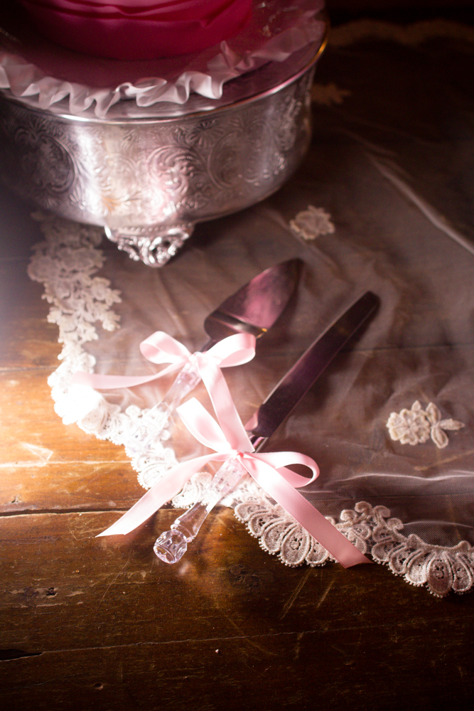 Silver cake server | Lorin Marie Photography