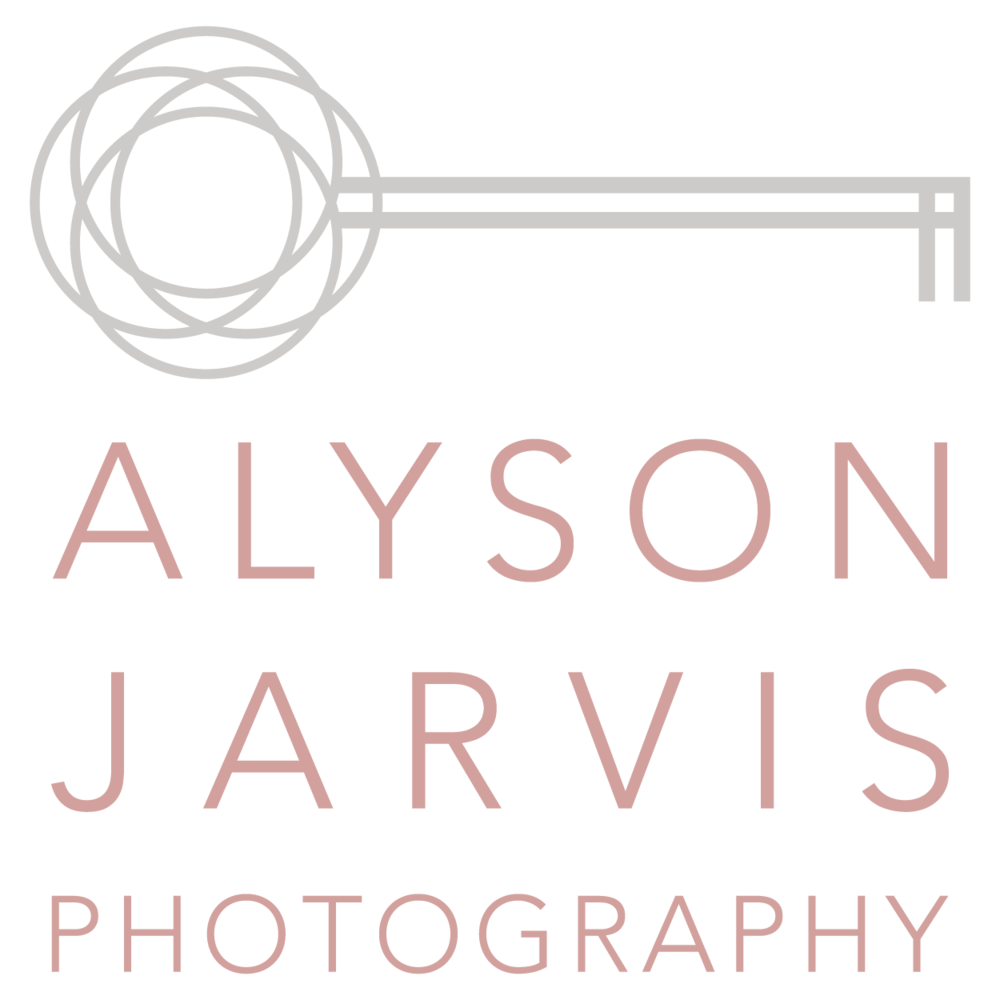 alyson jarvis photography