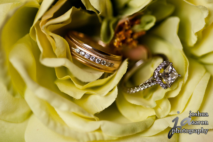 bride's engagement ring and grooms wedding band in a flower