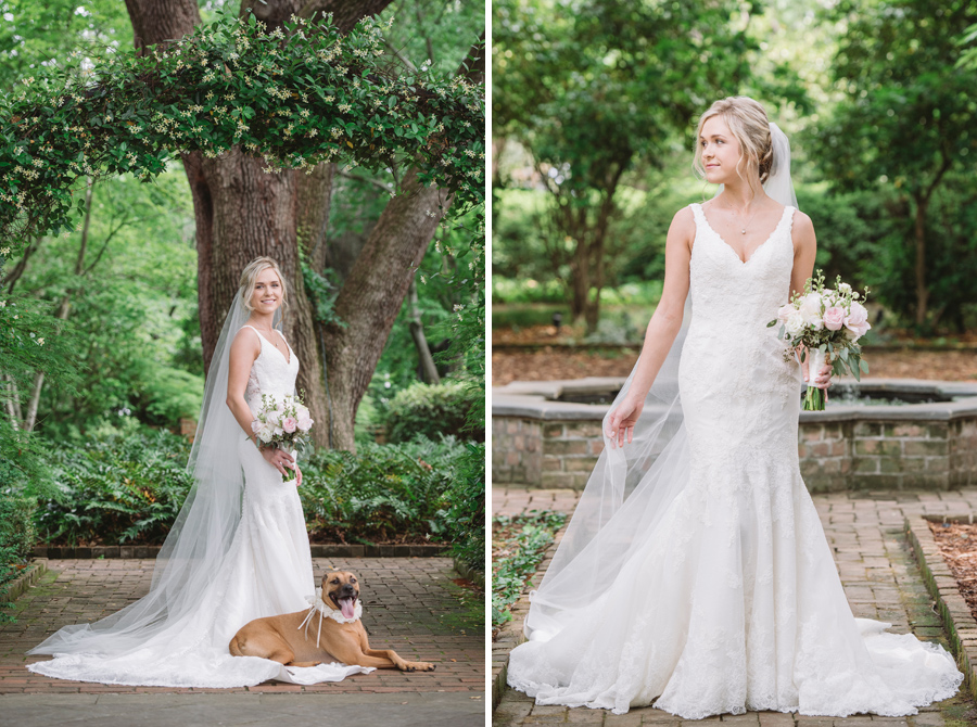 lauren bridal with dog