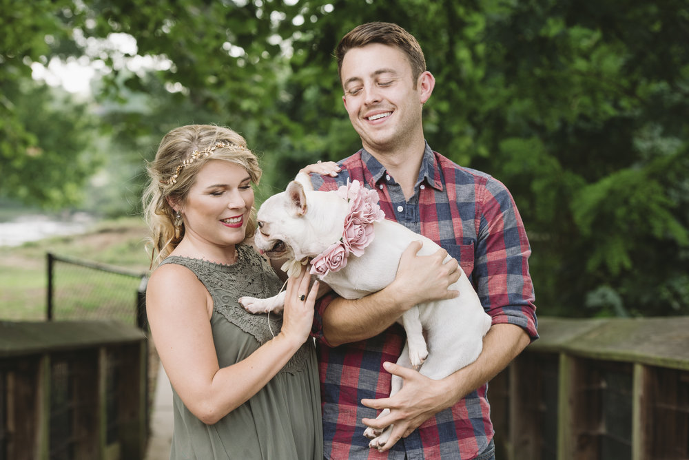 french bull dog engagement session