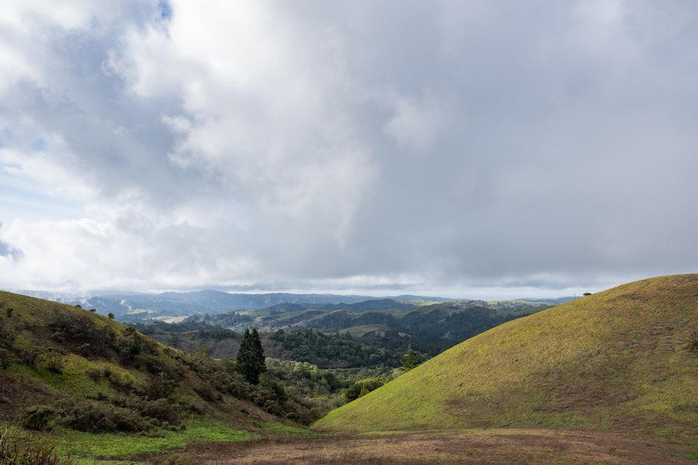 califonia mountains