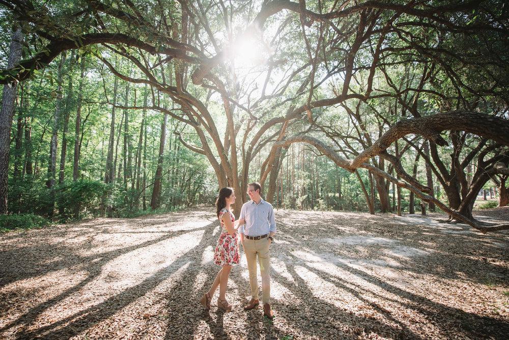 live oak trees columbia sc