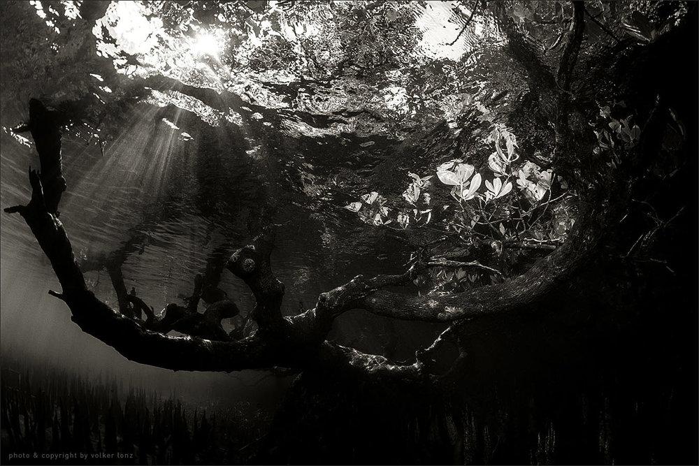 | 10. place | october 2012 | magazine unterwasser – germany