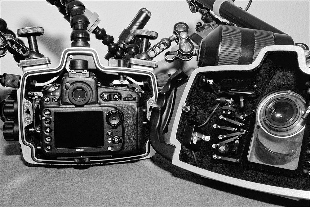 | housing & camera  | nikon d810 camera | seacam housing