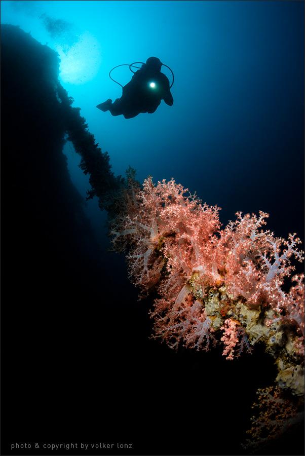 | indonesia | sulawesi | gorontalo | spot[•] tjenderawashi wreck