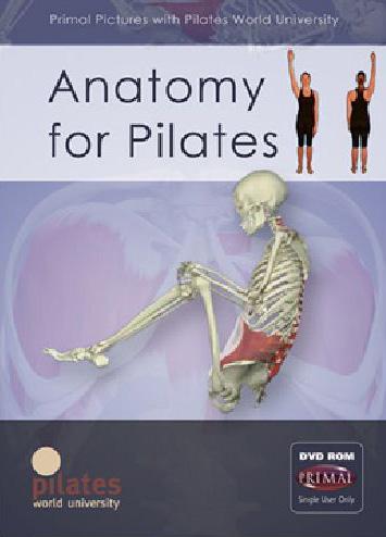 PrimalPictures - Anatomy for Pilates 2.jpg