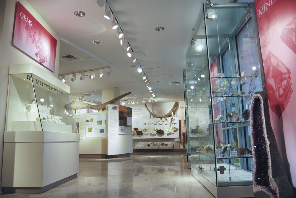 Colgate University Geology Museum   Hamilton, N.Y.