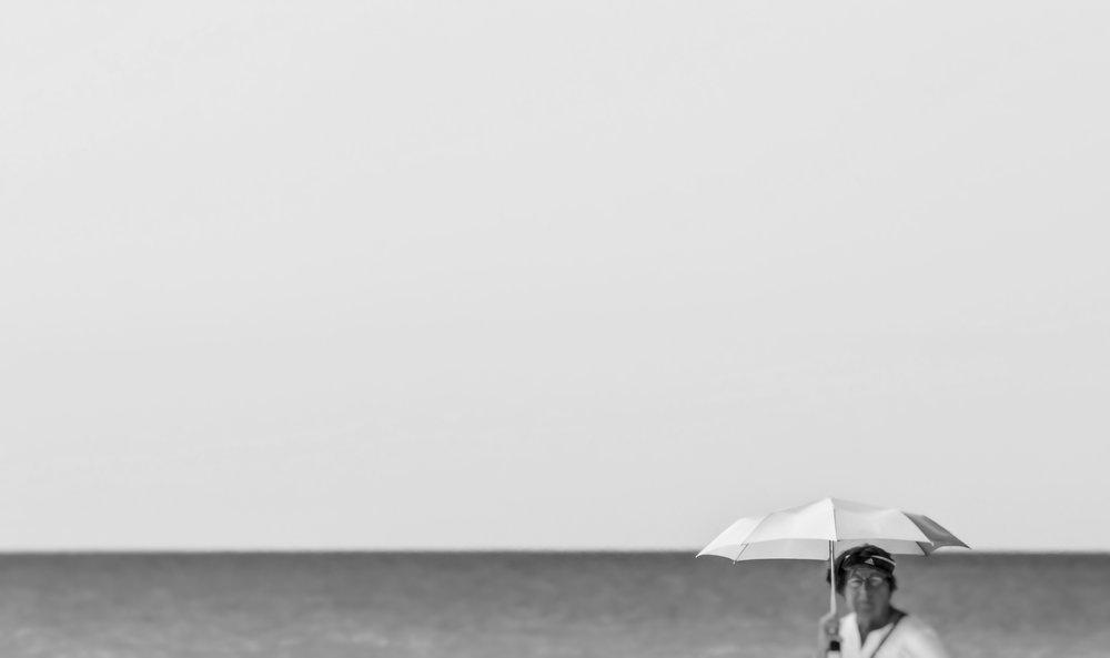 By the Sea   Honeymoon Island, Florida