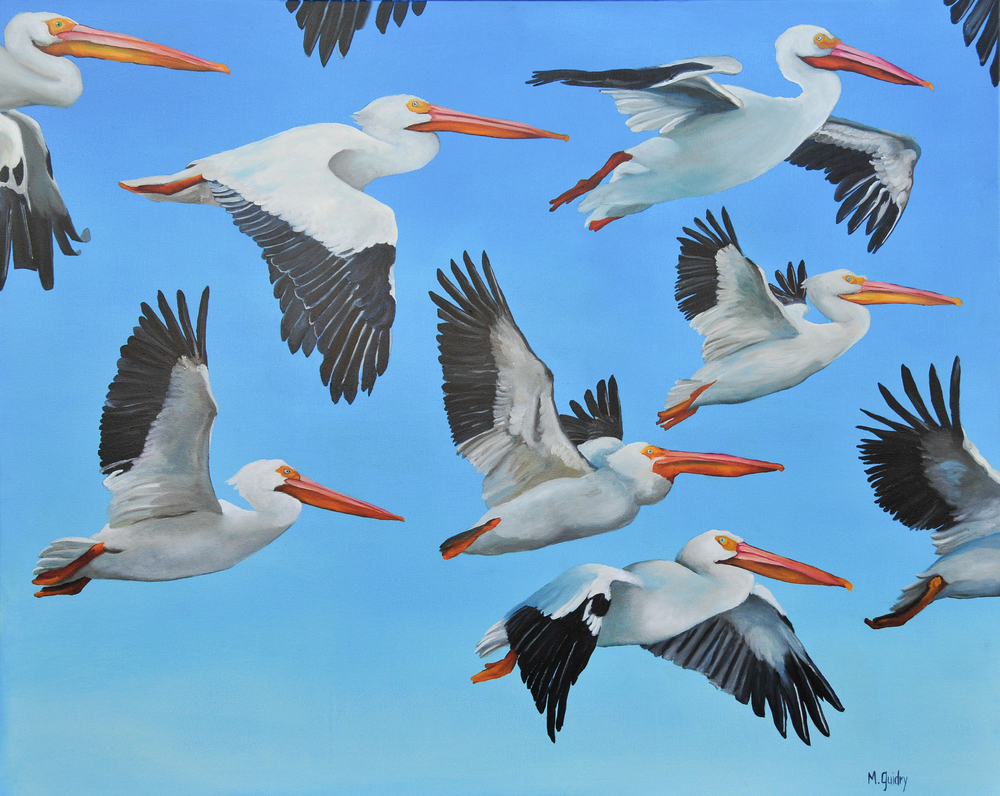 White_Pelican_Flock_louisiana_m.guidry_michael_guidry_oil_painting_marsh_new_orleans_artist.jpg