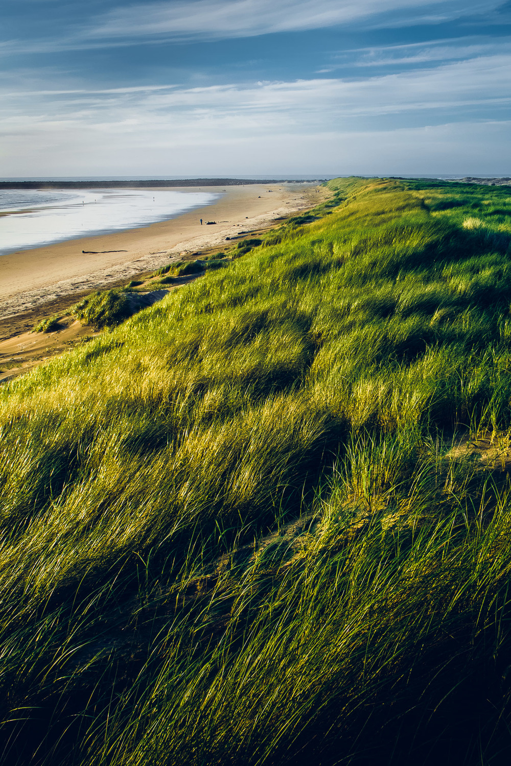 Sunset on the tall grass. South Beach State Park, Newport, Oregon. Fujifilm XE-1, XF18-55mm @ 18mm, ISO 200, f/11, 1/125.