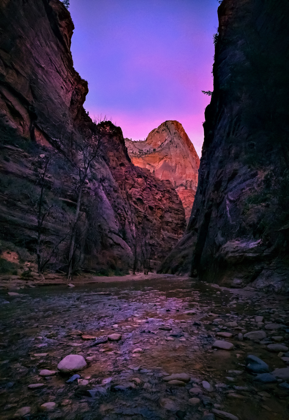 The Narrows at Zion National Park. Shot with the iPhone 5S in pano mode, giving a needed wide angle view that the X100T won't deliver. A Fuji XF10-24 lens would have covered this well, but that is a much bulkier setup than an X100t. [ iPhone 5S, f/2.2, 1/120s, ISO 320 ]