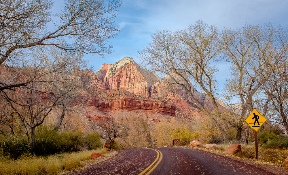 Red Asphalt -   The roads in Zion are paved with a reddish asphalt. Blends in beautifully.   [ Fujifilm X100t, f/5.6, 1/180s, ISO 200 ]