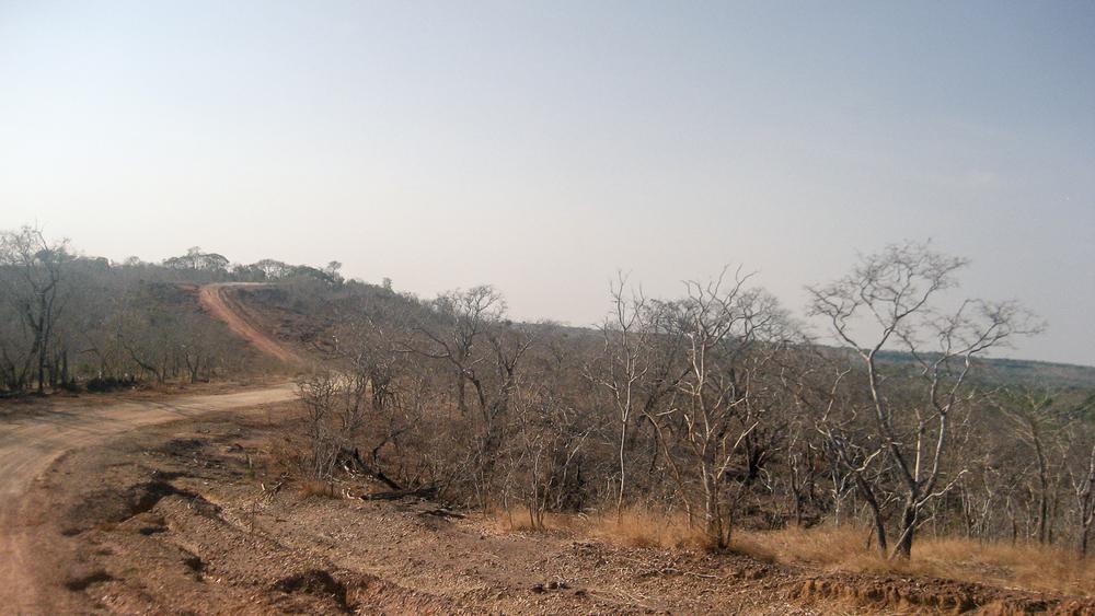 Lizarda | État du Tocantins