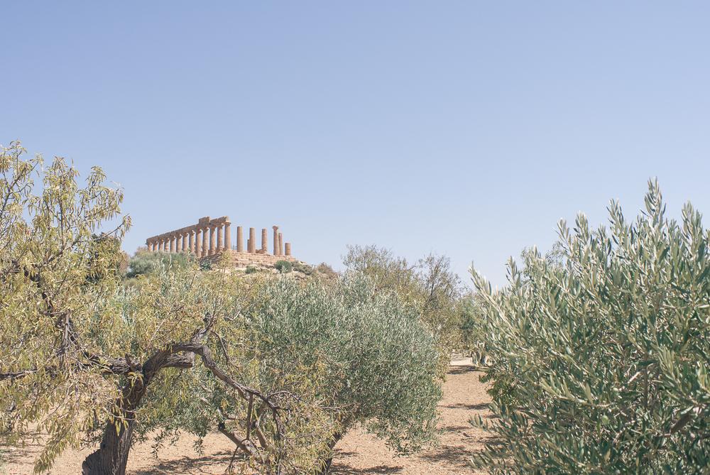 Vallée des Temples | Province d'Agrigente