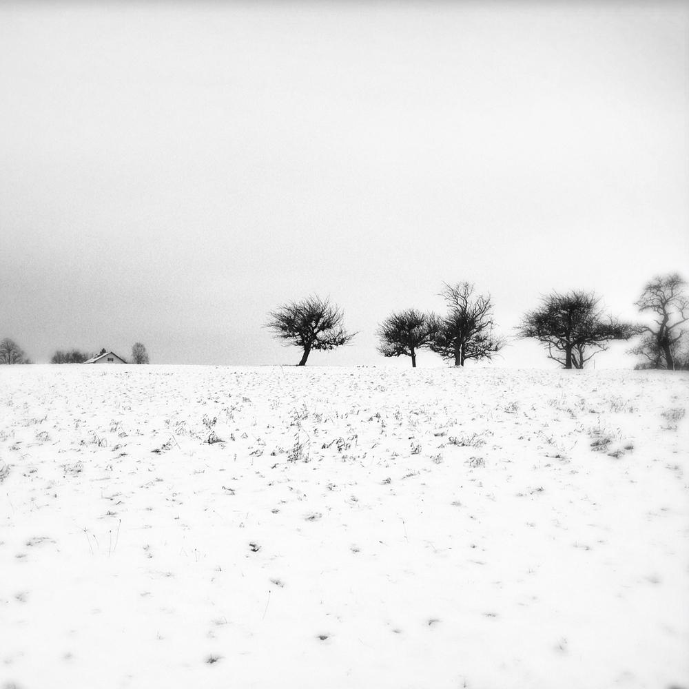 2012-12-01-IMG_1798.jpg