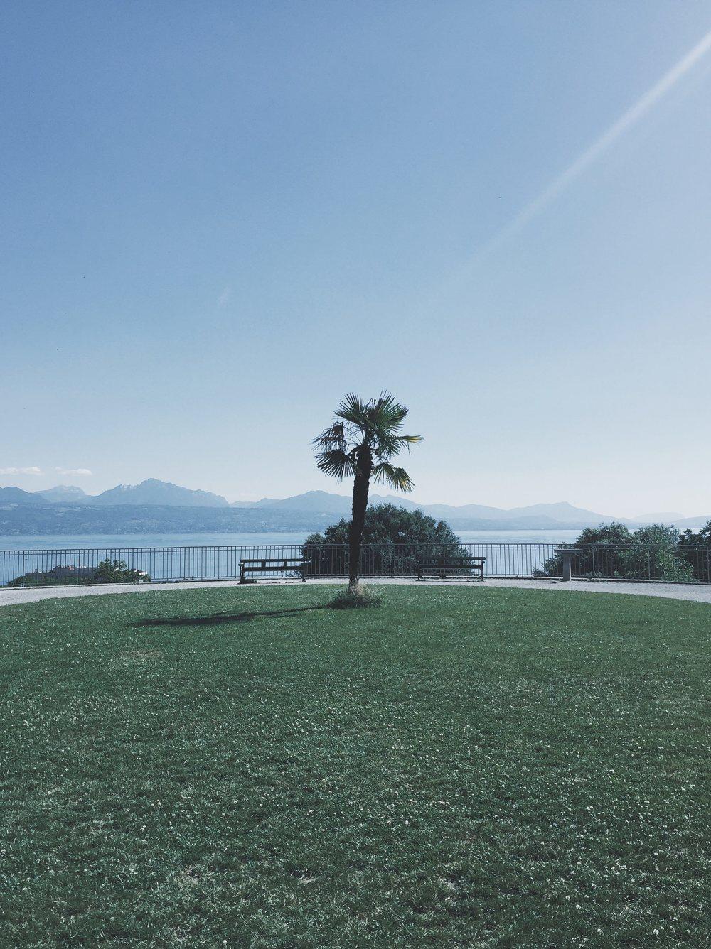 Lausanne | 9 juillet 2016