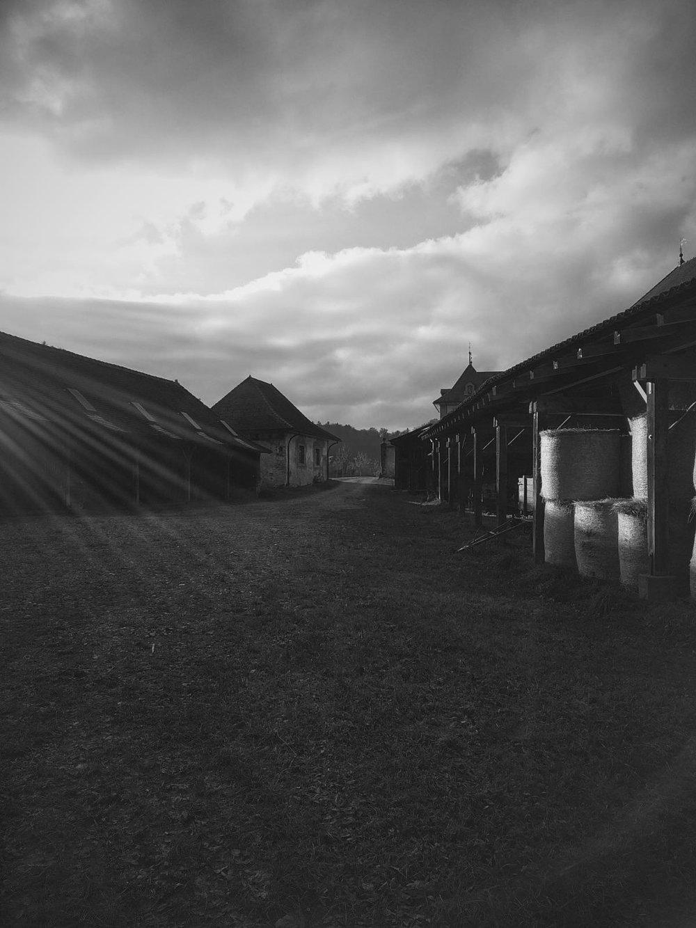 Posieux | 15 novembre 2016